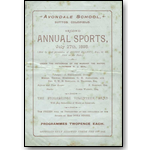 Avondale Boys School Annual Sports 1895